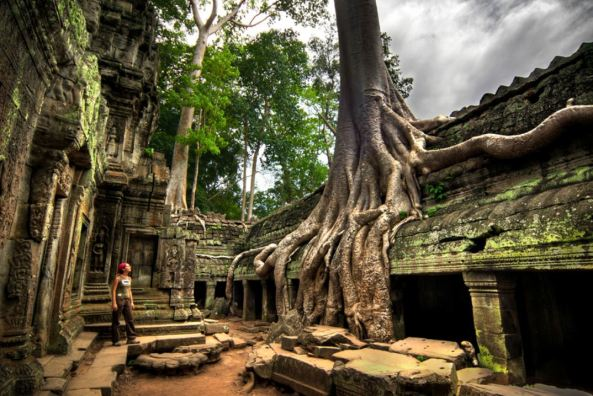 Ta-Prohm-temple-Cambodia